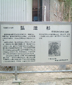 石部宿4.JPG