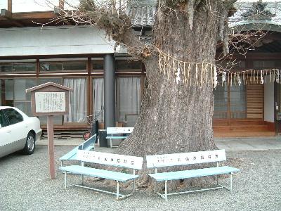 膳所6.JPG