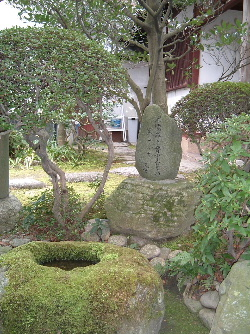 義仲寺3.JPG