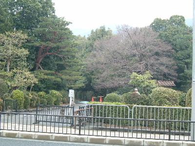 京16.JPG